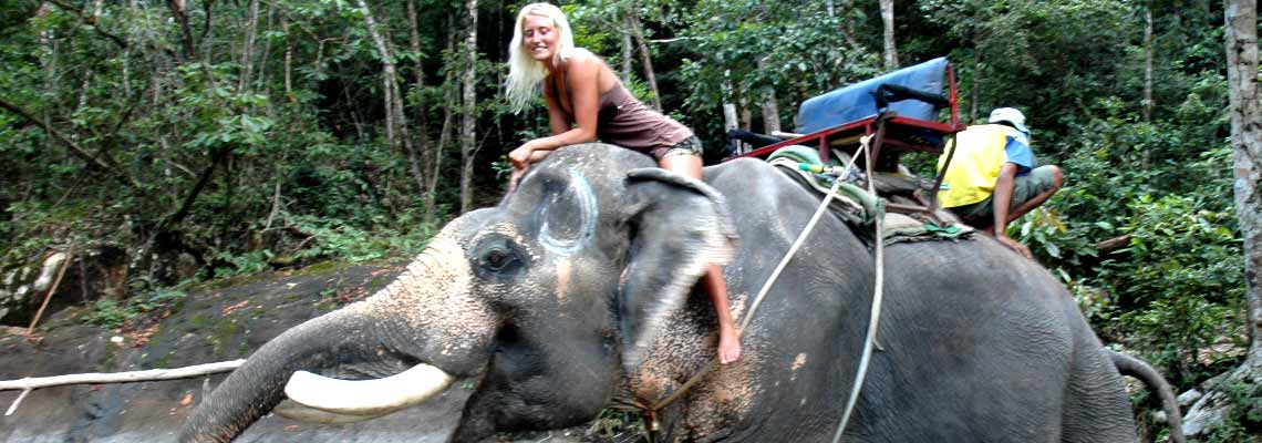 Elephant Trek on Koh Chang