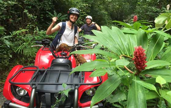 ATV into the jungle