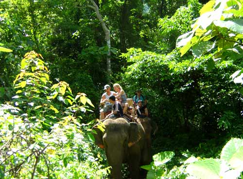Elephant ride on this trek